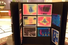ThermographicContest04